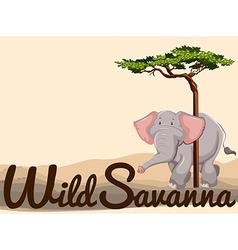 Wild elephant in savanna vector image