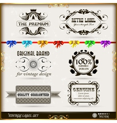 Set of calligraphic and floral design elements vector