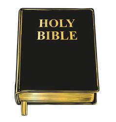 Bible gospel the doctrine of christianity vector