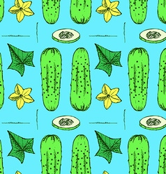 Sketch cucumbers in vintage style vector