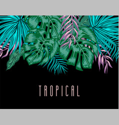 Tropical background with exotic palm leaves and vector
