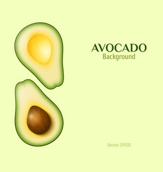 Realistic avocado background vector