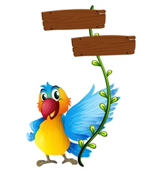 Empty boards with a colorful parrot vector image vector image