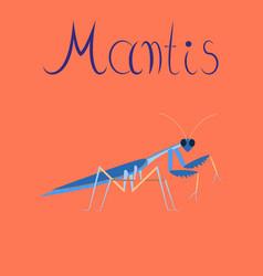 Flat on background mantis vector