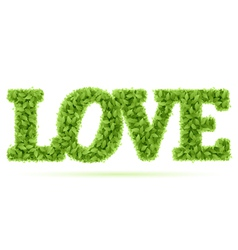 love word in green leaves vector image vector image