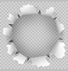torn hole and ripped of paper on a transparent vector image vector image