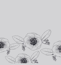 anemones flowers hand drawn sketch line art vector image