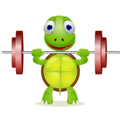 Strong turtle vector