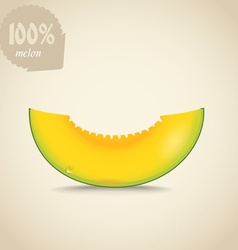 Cute fresh yellow melon vector