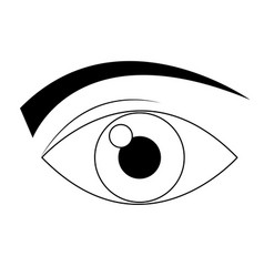 Eye icon surveillance system emblem vector