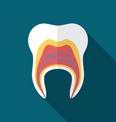 Flat design modern of tooth icon with long shadow vector image