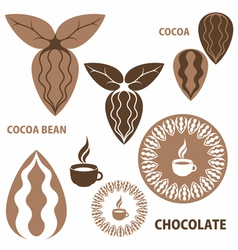Cocoa chocolate cocoa bean vector