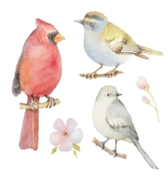 Set of watercolor birds and flowers vector