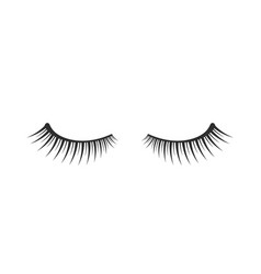 Black two eyelashes extension icon on white vector