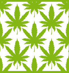cannabis or marijuana leaves seamless pattern vector image vector image
