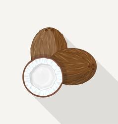 Coconut flat icon vector
