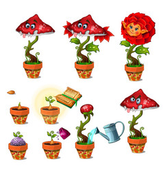 cute magic flower with face and toothy mushroom vector image vector image
