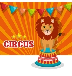 Lion circus animal show isolated icon vector