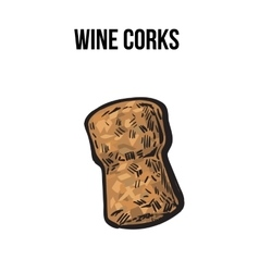 Traditional wine or champagne cork sketch style vector