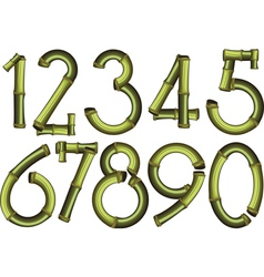 bamboo numbers vector image