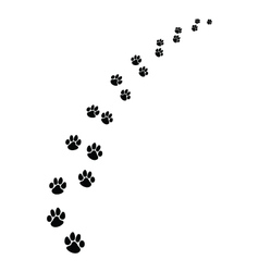 footprints of dogs 2 vector image vector image