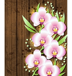 wooden background with pink orchids vector image
