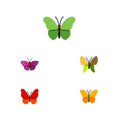 Flat monarch set of monarch beauty fly archippus vector