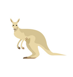 Kangaroo in flat design vector