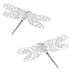 Set of two zentangle style dragonflies isolated on vector image