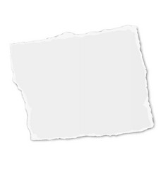 White square paper tear placed on white background vector