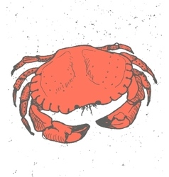 Vintage graphic with crab print vector