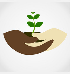 Human hand holding green small tree vector