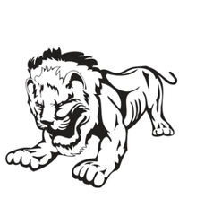 wild lion vector image