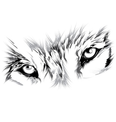 Wolf face vector image