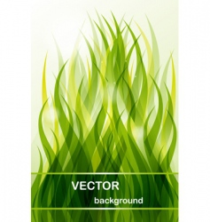 abstract background green grass vector image