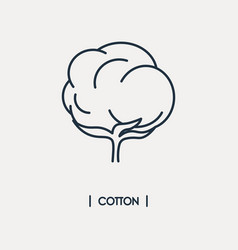 Cotton icon vector