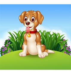 Cute dog sitting on the meadow background vector