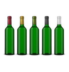 set 5 realistic green bottles of wine vector image vector image