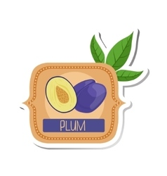 Plum bright color jam label sticker template in vector