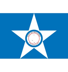 Houston city flag vector image vector image