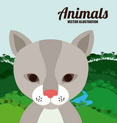 Animals design vector