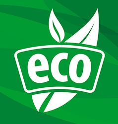 Eco logo with floral patterns vector