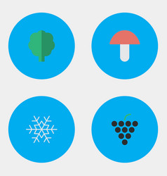 Set of simple garden icons elements flake of snow vector