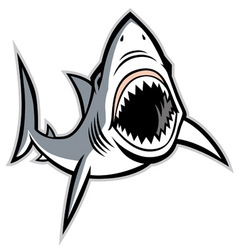 shark with opened mouth vector image vector image