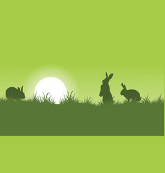 silhouette of rabbit on green backgrounds vector image