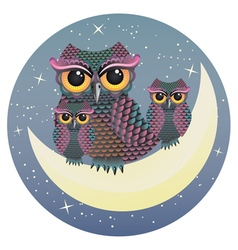 Owl on the crescent moon vector