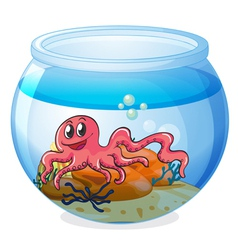 An octopus inside an aquarium vector image vector image