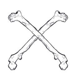 crossed bones - hand drawn vector image