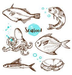 vintage hand drawn fish vector image