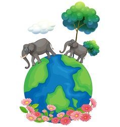 Two elephants walking at the earths surface vector